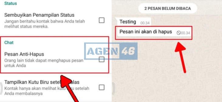 Anti Hapus Status GB WhatsApp