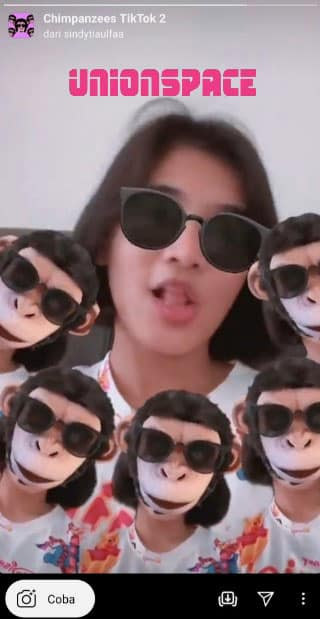 Tiktok Monkey Filter